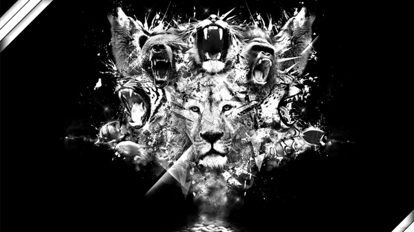 black and white animals artwork bears lions black background gorila wolves 1600x900 wallpaper_wallpaperswa.com_97